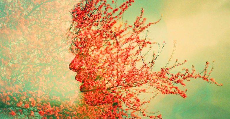 خوشبختی یعنی داشتن یک ذهن خلاق و قدرت جذب نشانهها