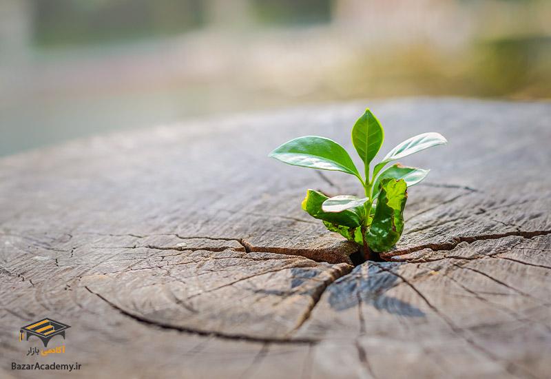 تحول درونی و تغییر - نکات مهم