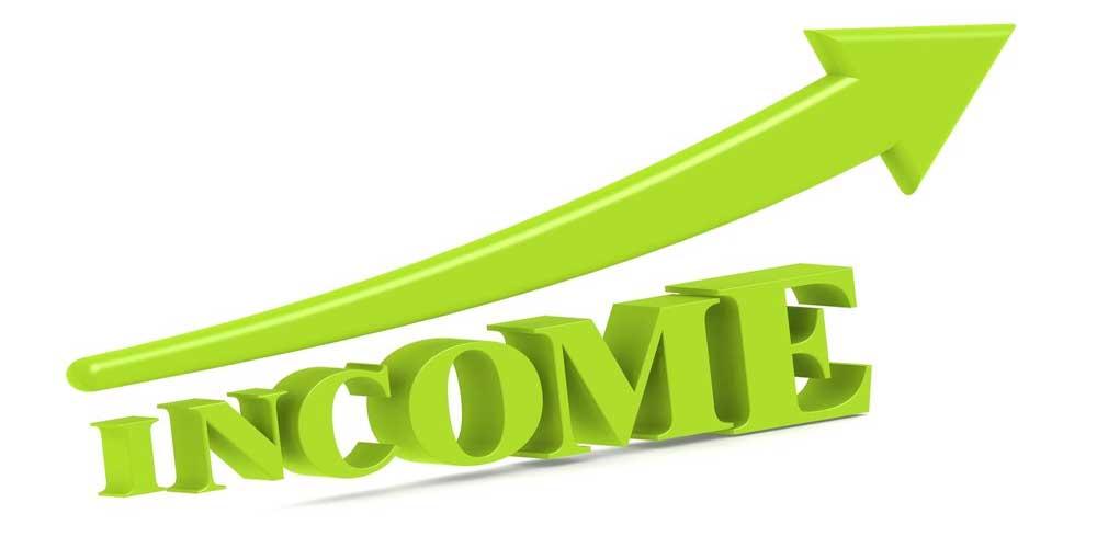 subsidiary income