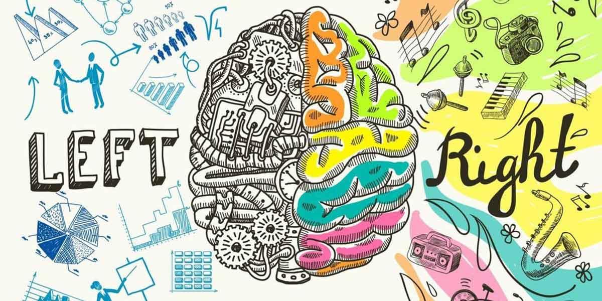 ذهنت را گسترده کن